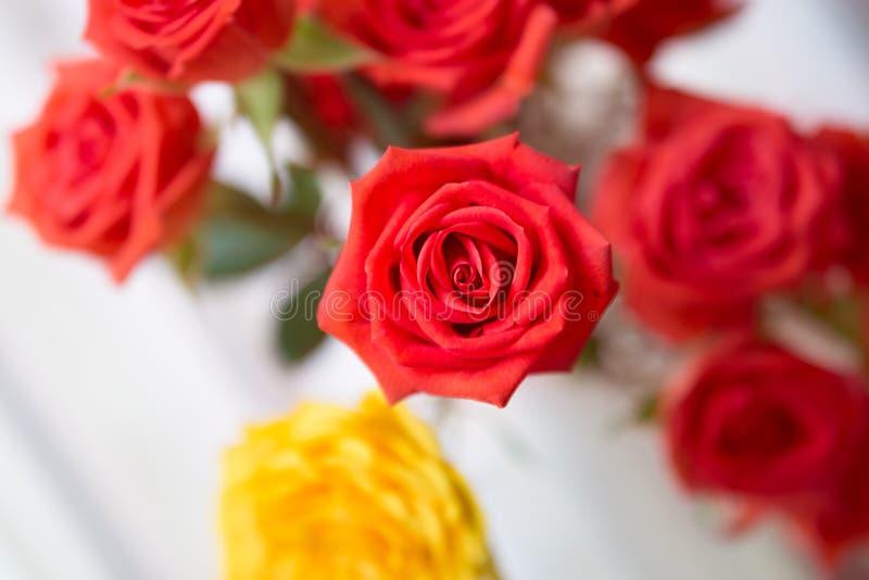 Ramalhete bonito de rosas vermelhas e amarelas de cima de fotografia de stock royalty free