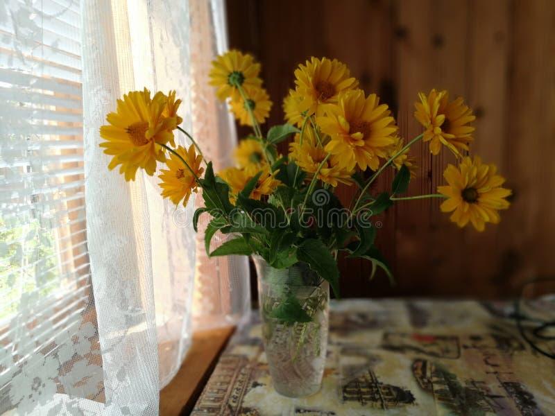 Ramalhete bonito do fim amarelo do crisântemo acima fotografia de stock