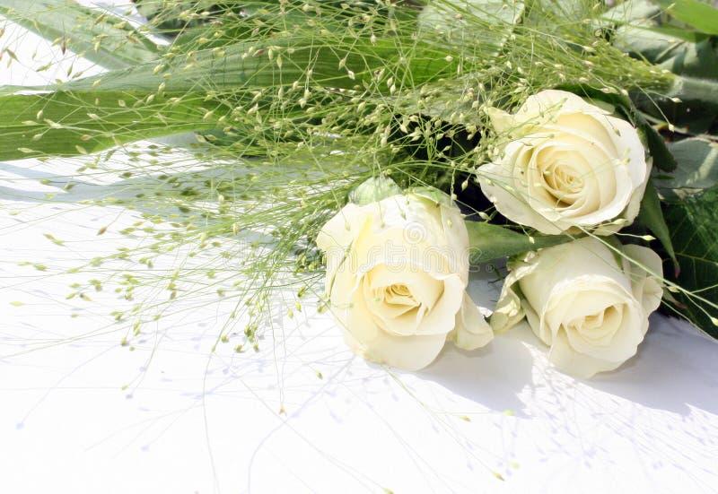Ramalhete branco das rosas foto de stock royalty free