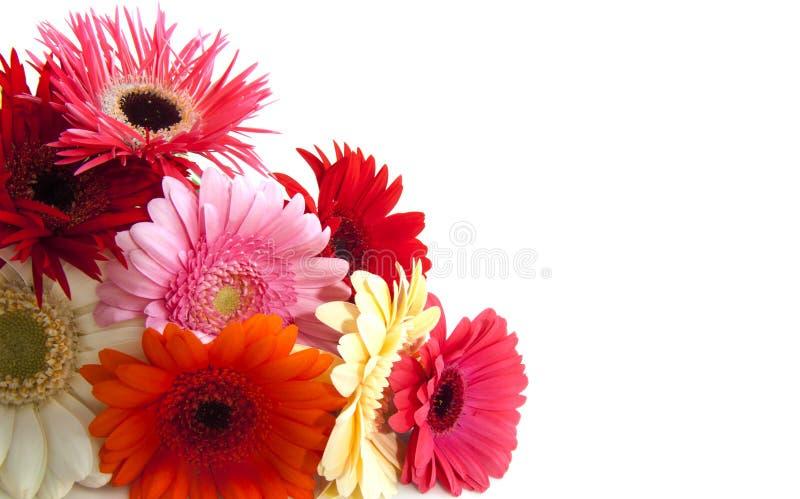 Ramalhete colorido bonito imagens de stock