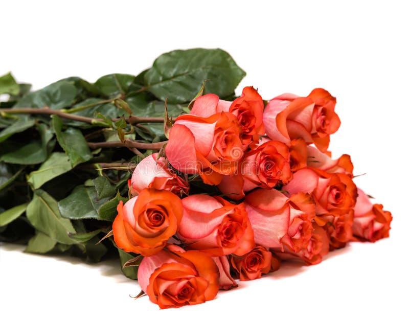 Ramalhete colorido da flor das rosas vermelhas no fundo branco foto de stock royalty free