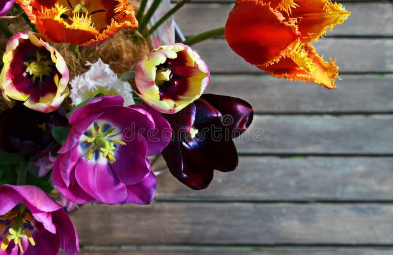Ramalhete colorido das flores da tulipa da mola no fundo de madeira cinzento fotos de stock royalty free