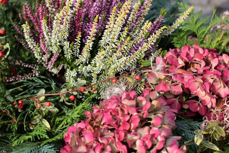 Ramalhete colorido de flores frescas diferentes Fundo rústico da flor Fim acima Fundo bonito de flores brilhantes do jardim fotografia de stock