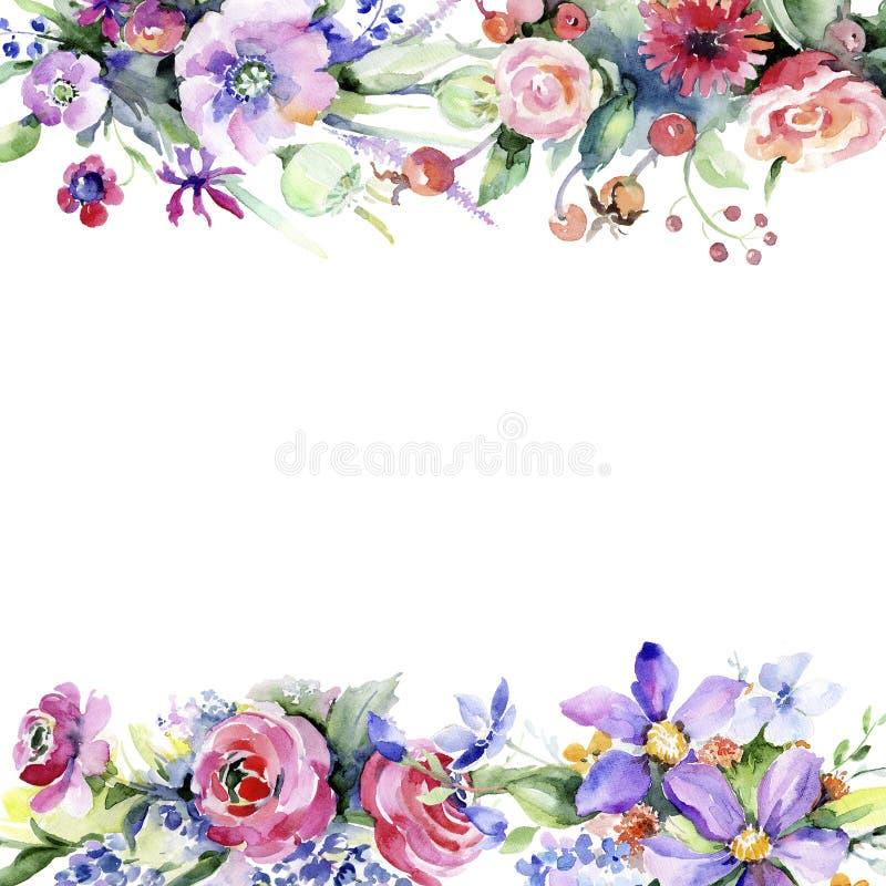 Ramalhete colorido Flor botânica floral Quadrado do ornamento da beira do quadro ilustração royalty free