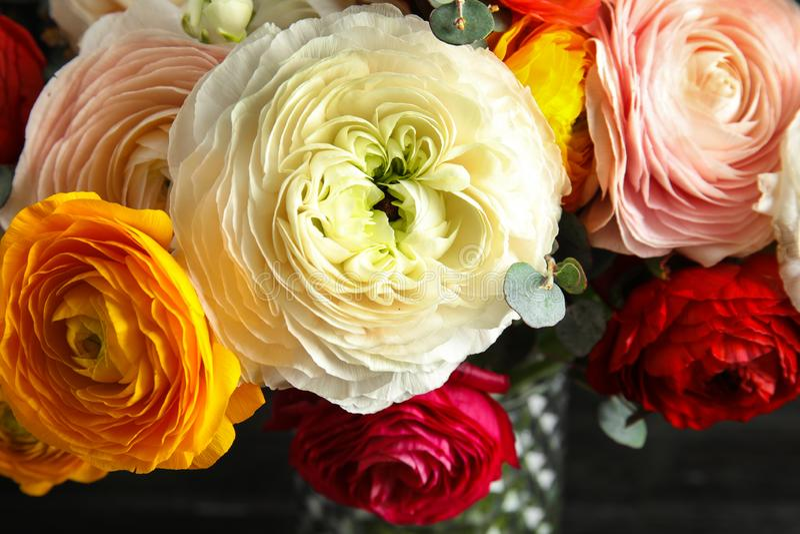 Ramalhete com as flores brilhantes bonitas na obscuridade, close up do ranúnculo foto de stock royalty free