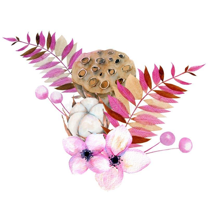 Ramalhete com a flor do algodão da aquarela, as caixas cor-de-rosa florais e dos lótus ilustração royalty free