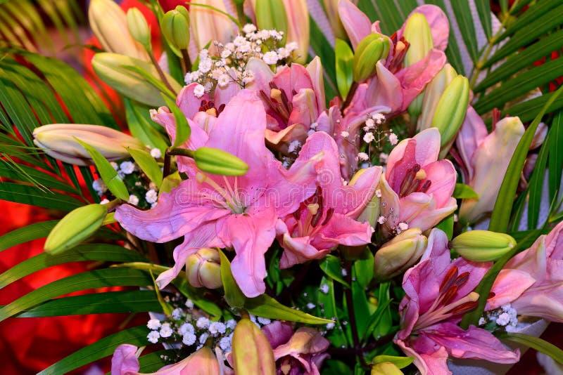 Ramalhete cor-de-rosa bonito da flor do lírio fotos de stock