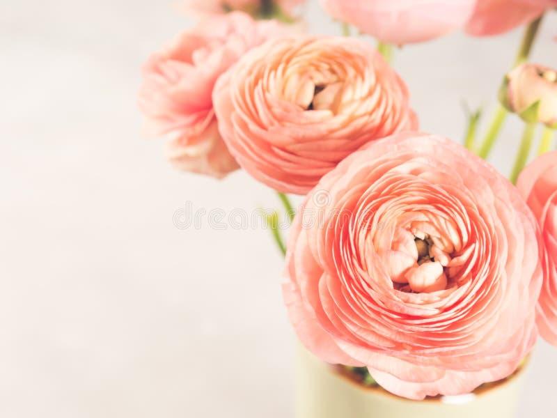 Ramalhete cor-de-rosa bonito do ranúnculo fotos de stock royalty free