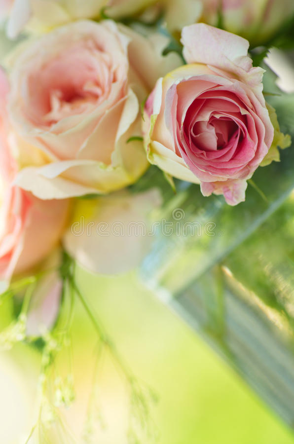 Ramalhete cor-de-rosa das rosas fotografia de stock