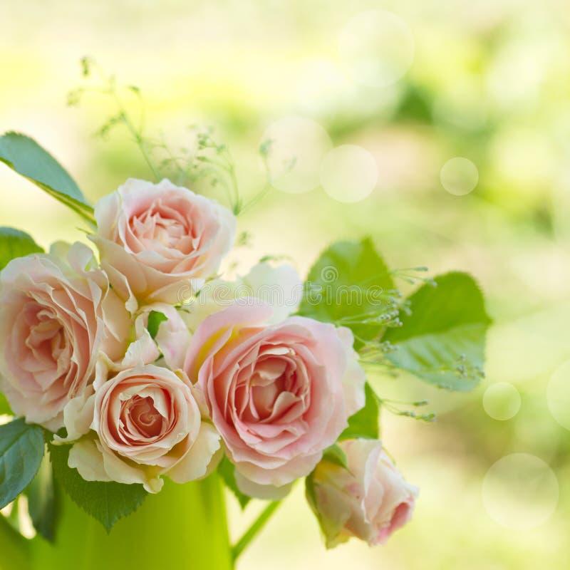 Ramalhete cor-de-rosa das rosas com espaço livre para o texto fotos de stock royalty free