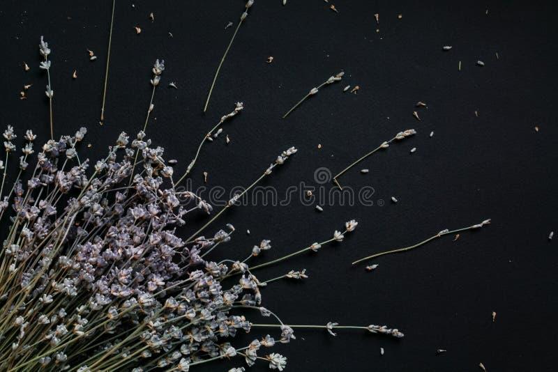 Ramalhete da alfazema em um fundo preto fotos de stock