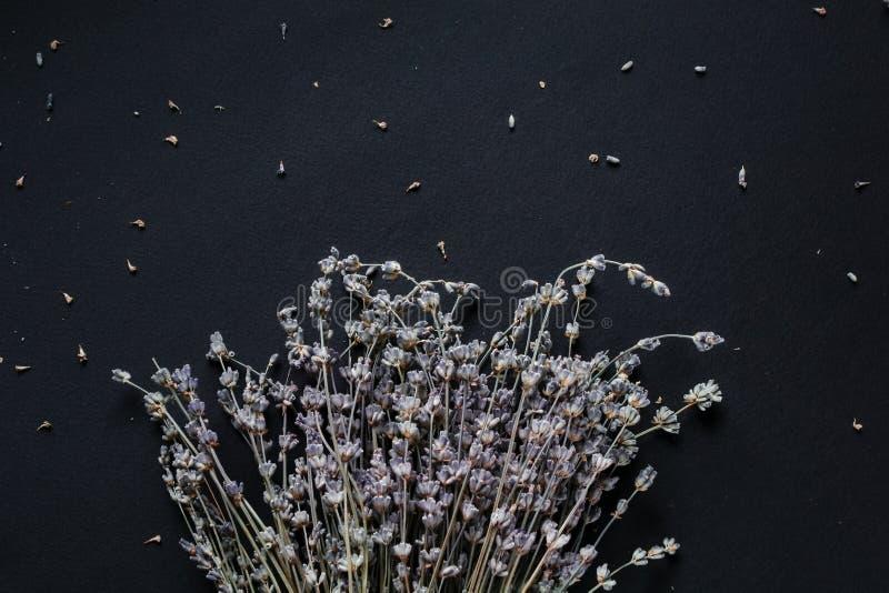Ramalhete da alfazema em um fundo preto imagem de stock royalty free