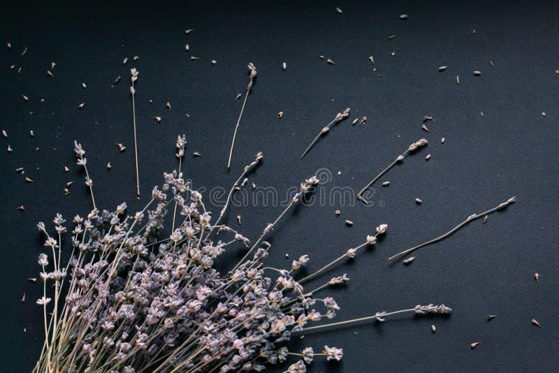 Ramalhete da alfazema em um fundo preto fotografia de stock