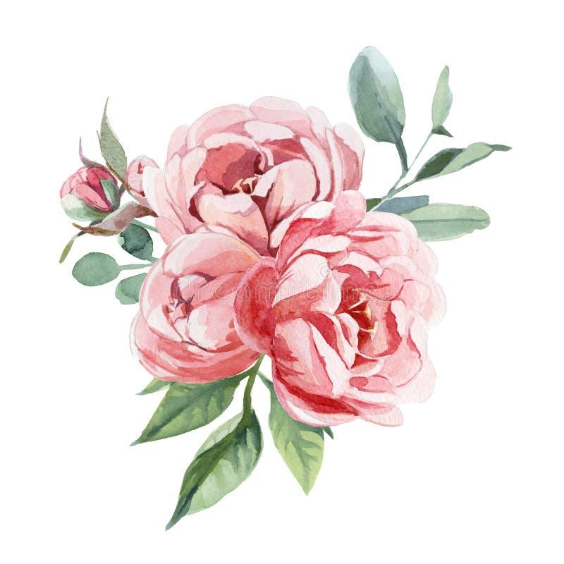 Ramalhete da aquarela de flores da peônia e do blosom para isolar-se no fundo branco para o casamento, o convite, os cartões do V ilustração do vetor
