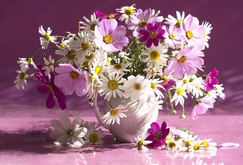 Ramalhete da camomila das flores fotografia de stock