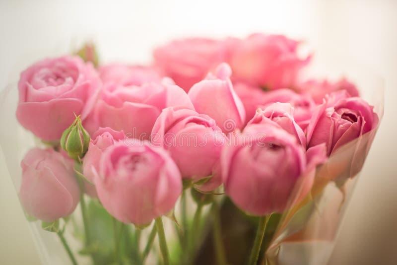 Ramalhete da peônia delicada pálida, rosas envolvidas no celofane fotografia de stock royalty free