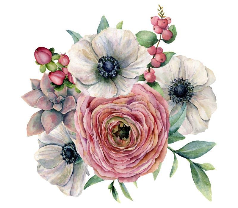 Ramalhete da planta carnuda, do ranúnculo e da anêmona da aquarela Flores pintados à mão, folhas do eucaliptus, bagas e planta ca ilustração royalty free