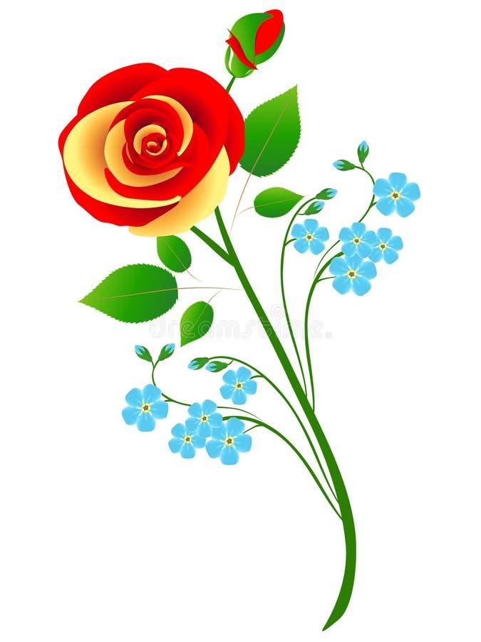 Ramalhete da rosa com azul para esquecer-me não flores em um fundo branco ilustração stock