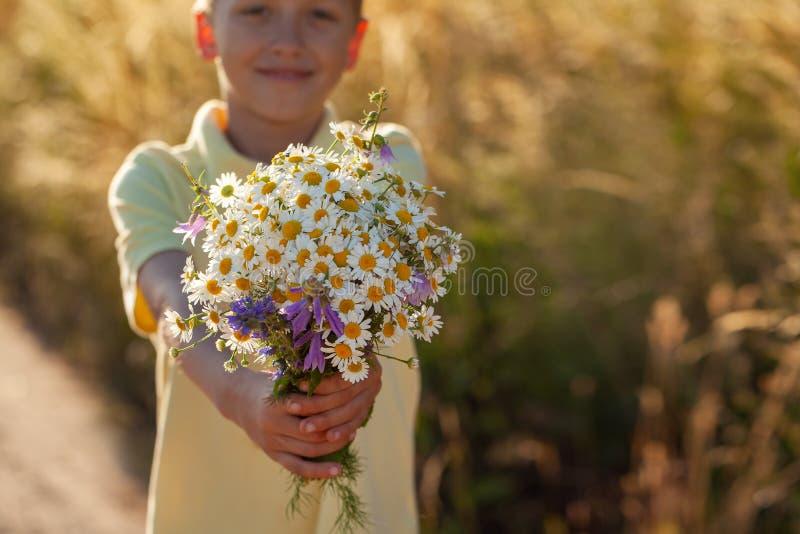 Ramalhete da terra arrendada do menino da criança de flores da camomila de campos no dia de verão Crian?a que d? flores fotografia de stock