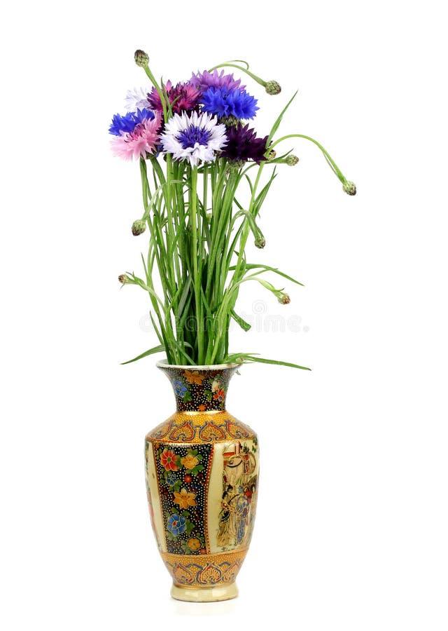 Ramalhete das centáureas em um vaso da porcelana imagens de stock royalty free