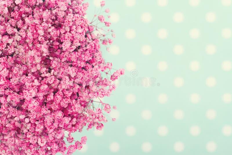Ramalhete das flores do bebê cor-de-rosa imagem de stock