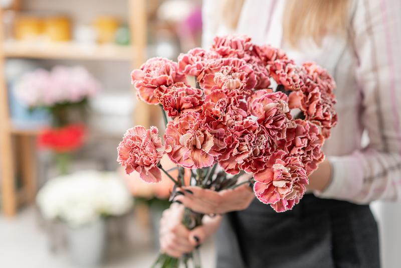 Ramalhete das flores do cravo corais e da cor vermelha Grupo da mola na mão da mulher Presente para o dia de mães fotos de stock