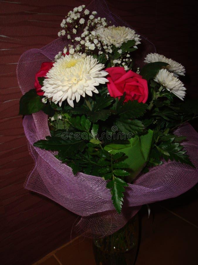 Ramalhete das flores dos crisântemos brancos fotografia de stock