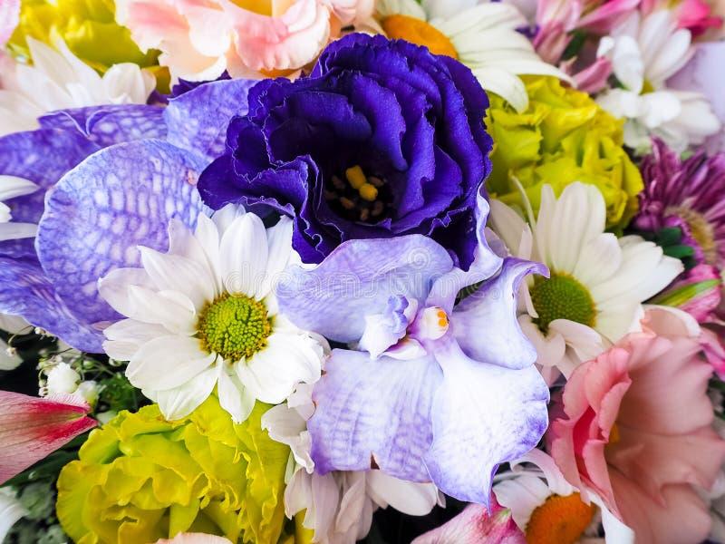 Ramalhete das flores: orquídeas lilás e cor-de-rosa, crisântemos brancos e cor-de-rosa, rosa e eustomas roxos fotografia de stock royalty free