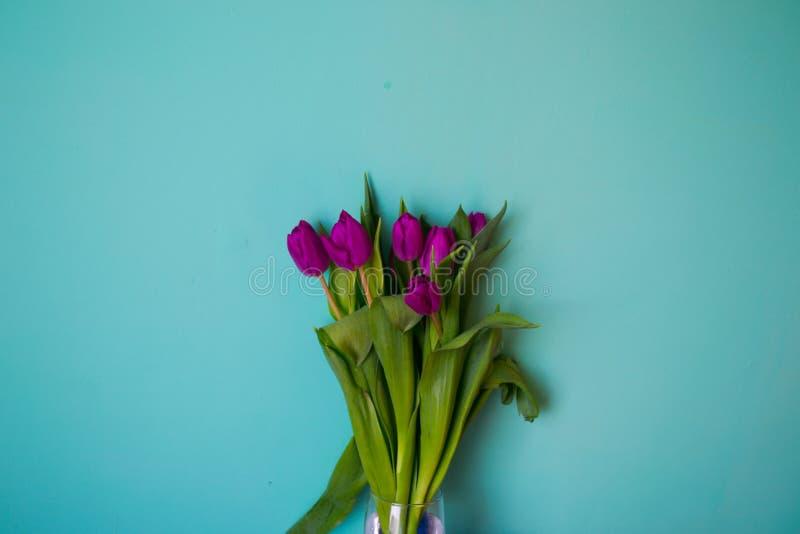 Ramalhete das folhas vibrantes bonitas das tulipas das flores das hastes em um fundo azul fotos de stock royalty free