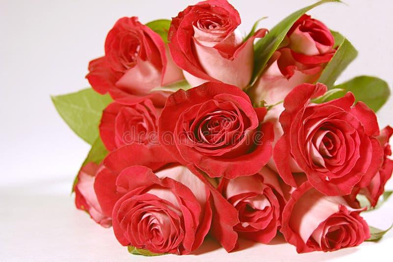 Ramalhete das rosas fotos de stock