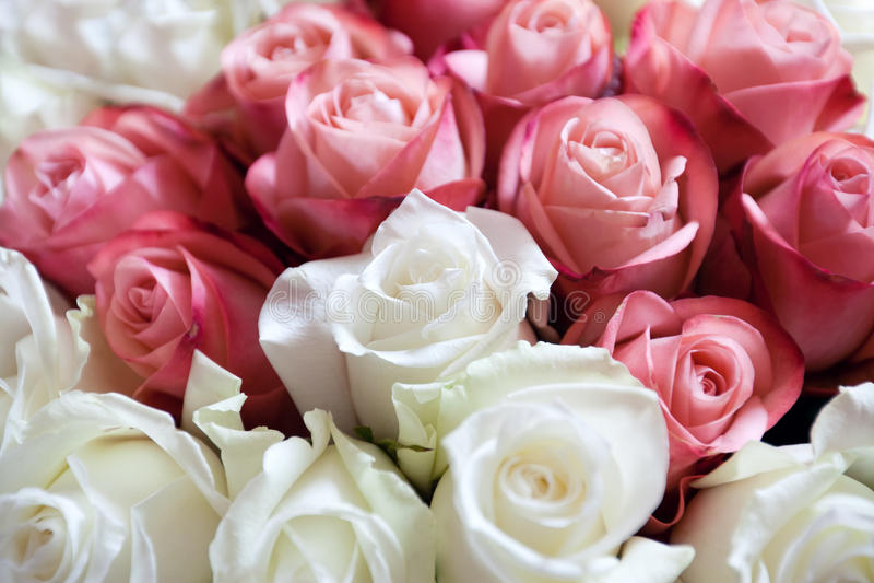 Ramalhete das rosas fotos de stock royalty free