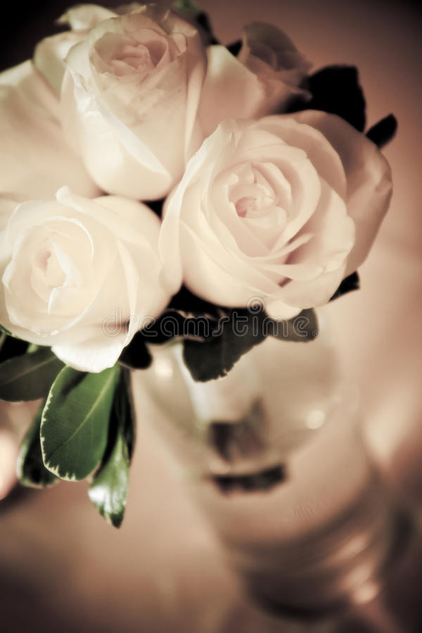 Ramalhete das rosas brancas fotografia de stock