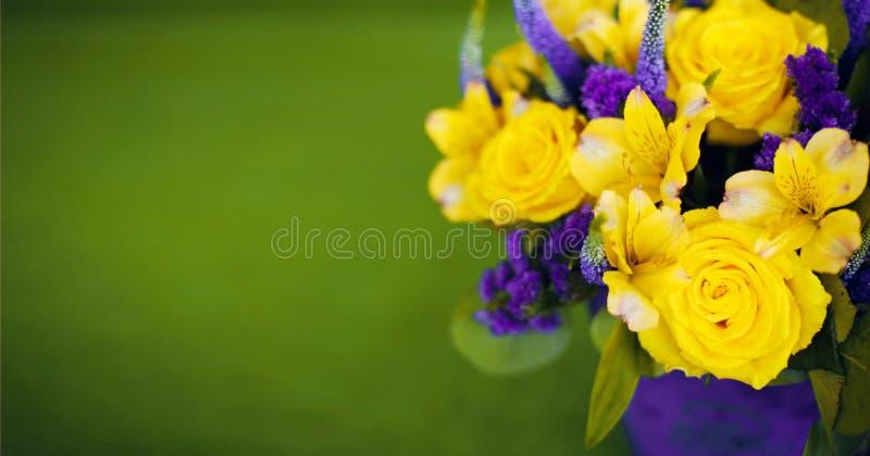 Ramalhete das rosas do fim do presente da flor acima, viola amarela do cartão fotografia de stock royalty free