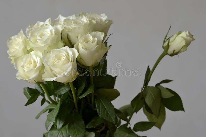 Ramalhete das rosas e uma rosa não florescida fotografia de stock royalty free