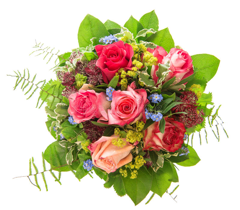 Ramalhete das rosas isolado no fundo branco flor cor-de-rosa e vermelha fotos de stock royalty free