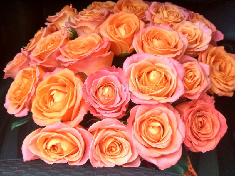 Ramalhete das rosas para o amado fotos de stock