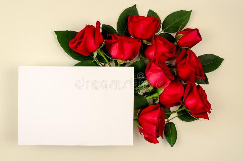 Ramalhete das rosas vermelhas com o cartão do Livro Branco da placa no fundo bege da cor fotografia de stock