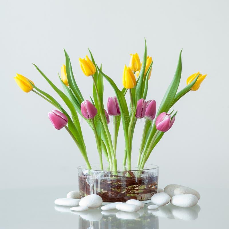 Ramalhete das tulipas imagem de stock royalty free