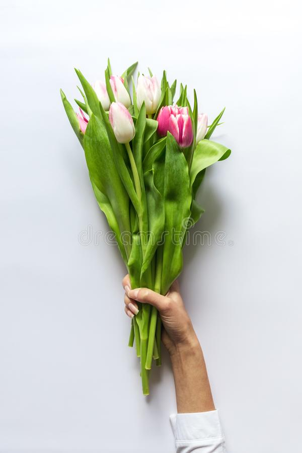 Ramalhete das tulipas nas mãos do ` s da mulher imagens de stock