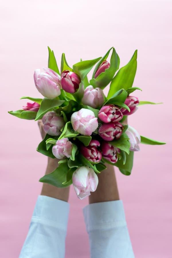 Ramalhete das tulipas nas mãos do ` s da mulher fotografia de stock royalty free