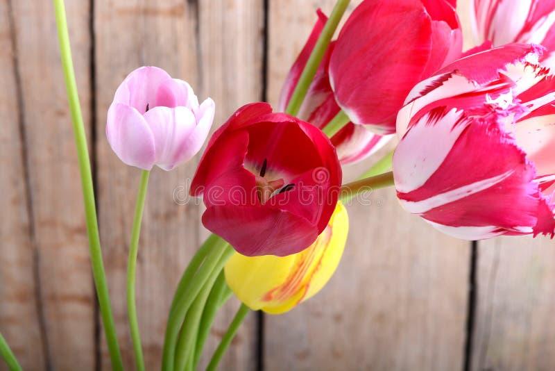 Ramalhete das tulipas vermelhas contra um fundo de madeira, fim acima das flores fotos de stock royalty free