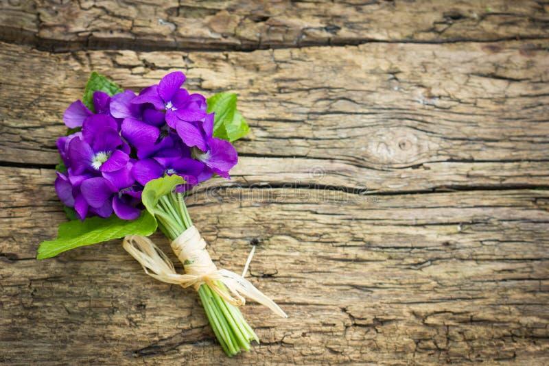 Ramalhete das violetas imagem de stock royalty free