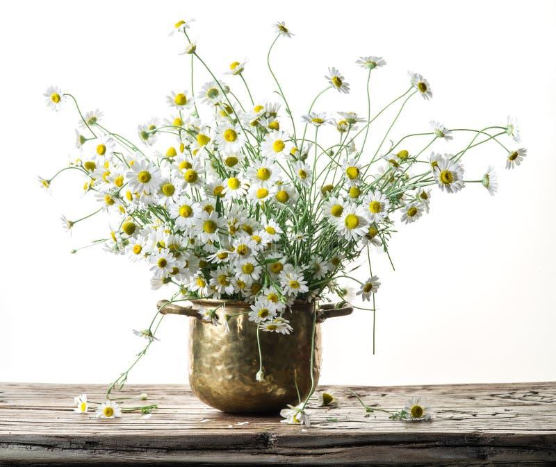 Ramalhete de camomilas de campo no vaso na tabela de madeira fotos de stock