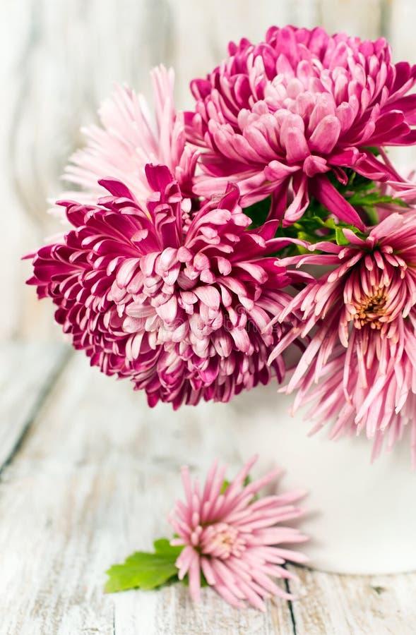 Ramalhete de crisântemos cor-de-rosa foto de stock