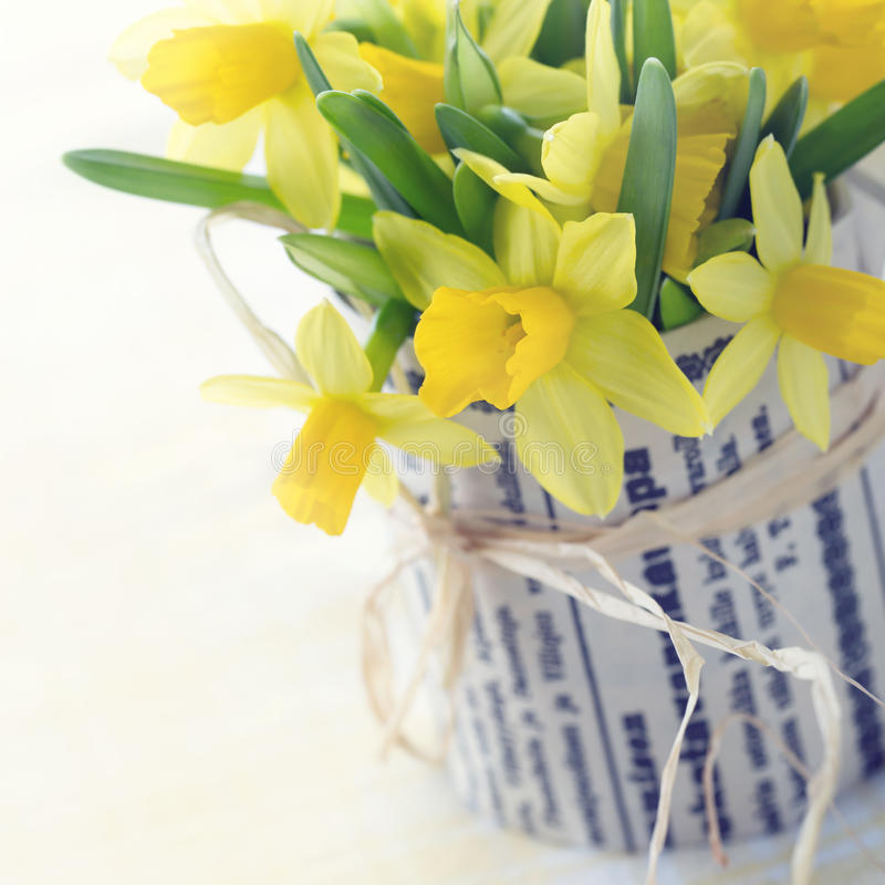 Ramalhete de daffodils amarelos fotografia de stock royalty free