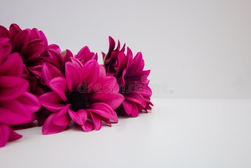 Ramalhete de flores artificiais carmesins, decoração interior das flores decorativas imagem de stock