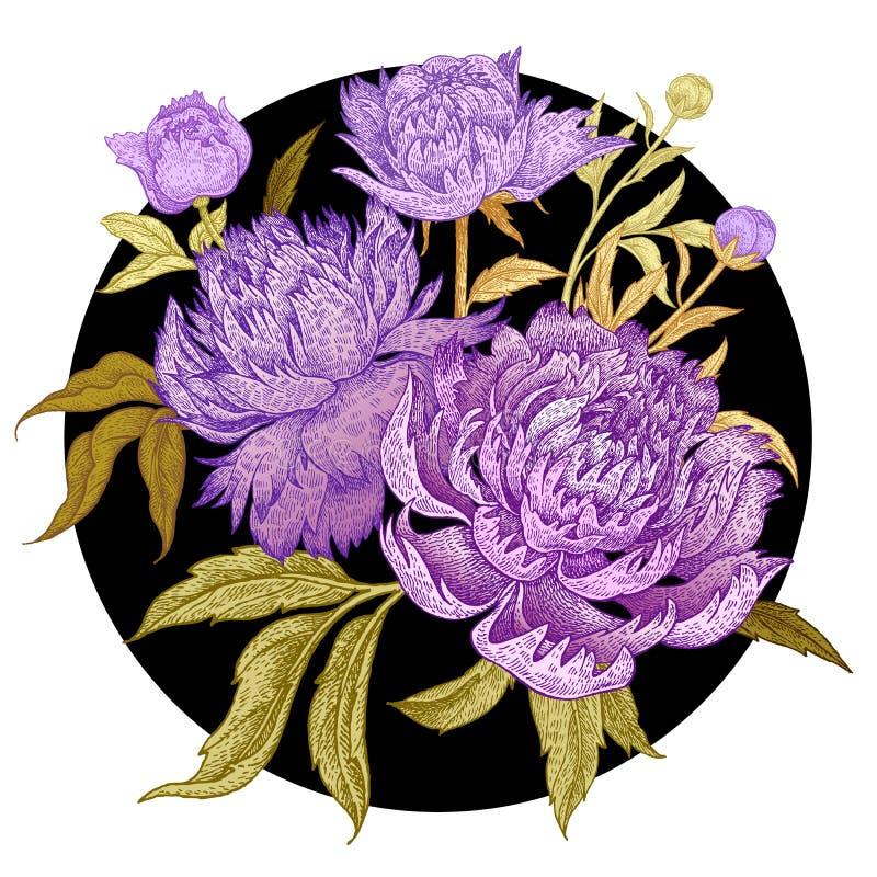 Ramalhete de flores bonitas das peônias ilustração do vetor