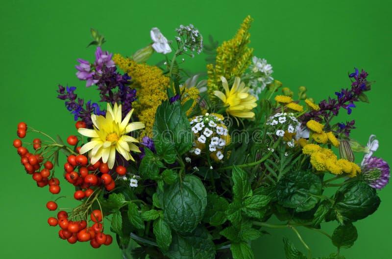 Ramalhete de flores do campo fotografia de stock royalty free