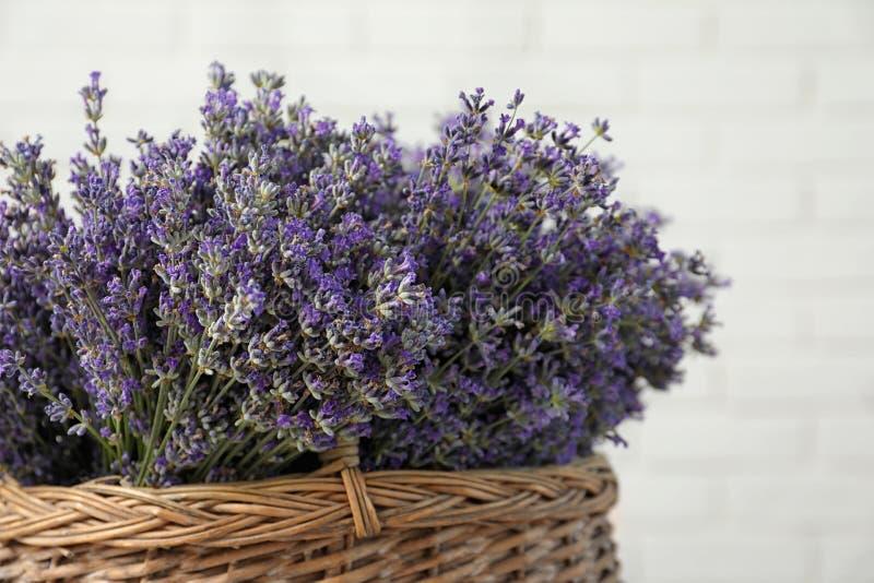 Ramalhete de flores frescas da alfazema na cesta contra a parede de tijolo branca fotografia de stock