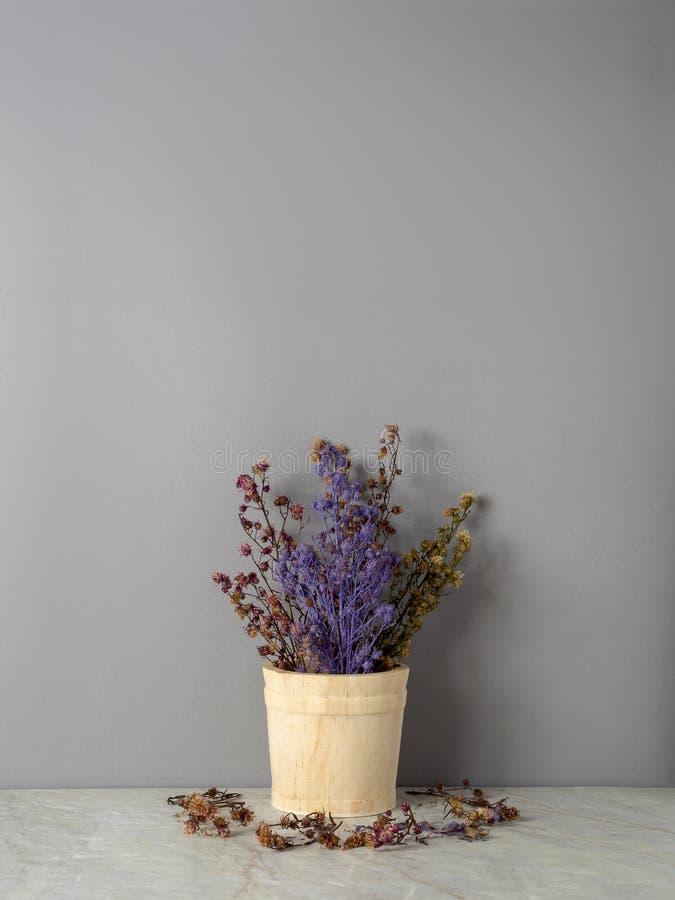 Ramalhete de flores secadas do Gypsophila para a decoração imagens de stock